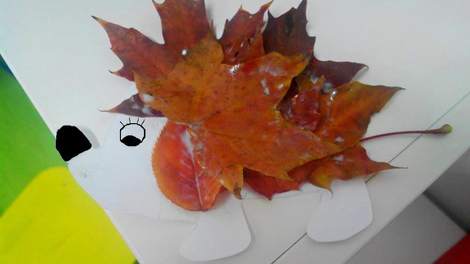 Vyrobte si podzimního ježka